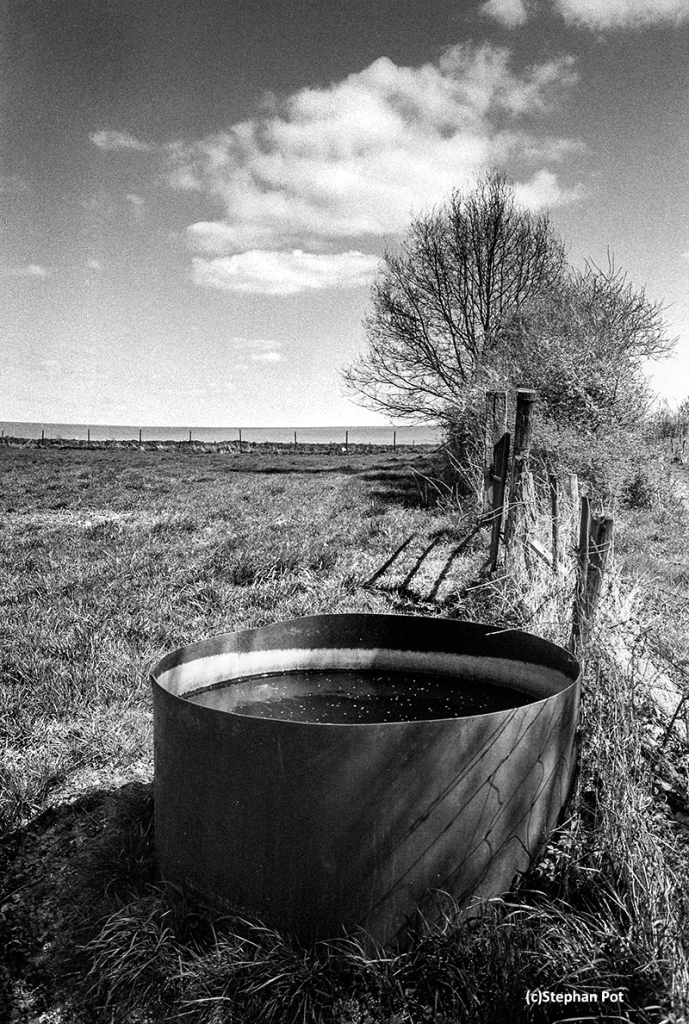 Watering Trough (2015) Olympus OM-1n with Zuiko 28mm and loaded with Ilford FP4 Plus